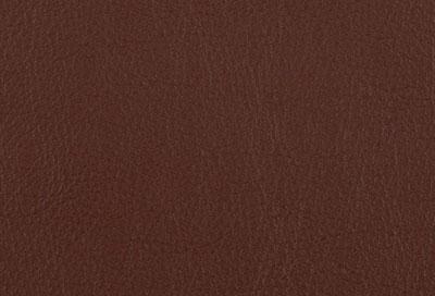 05506 cinnamon