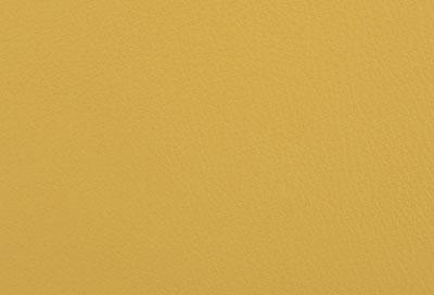05806 limon