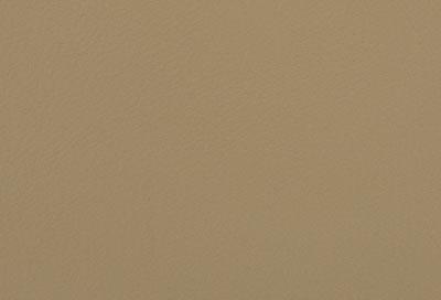 05501 parchment
