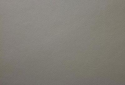 55205 grey-brown