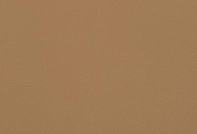 05502 camel